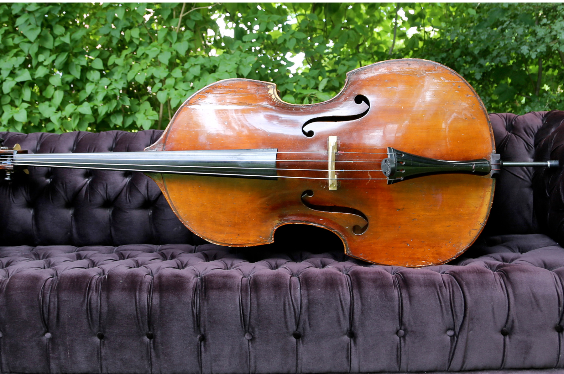 UPRIGHT BASS LESSONS in WINTER PARK, FL